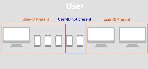 Для одних устройств будут определены пользовательские User-ID, а для других — автоматически сгенерированные