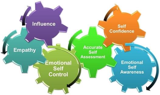 Шесть эмоциональных компетенций