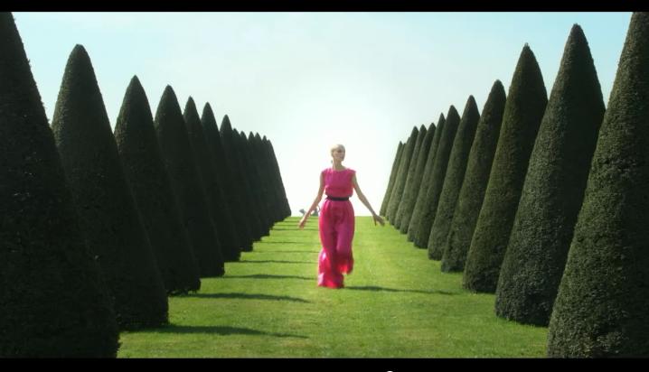 Вирусный ролик Dior