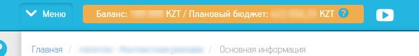 Пример отображения баланса в казахстанских тенге