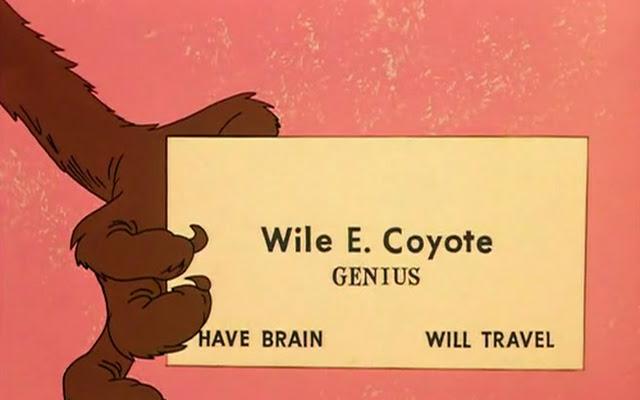coyote-bey