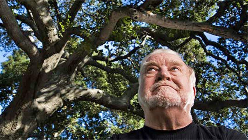 Михай Чиксентмихайи (Mihaly Csikszentmihalyi), профессор психологии и автор «Потока»