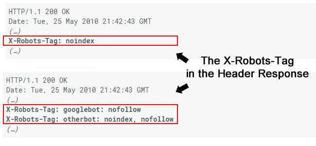 Для этого используют тег x-robots-tag http header