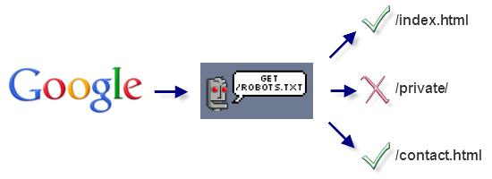 Google обнаружил файл robots