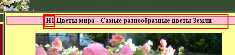 h1 — заголовок страницы, который пользователи видят на самой странице, а не в выдаче поисковых систем