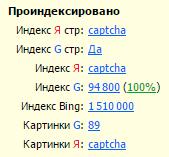 На скриншоте — RDS Bar для Google Chrome
