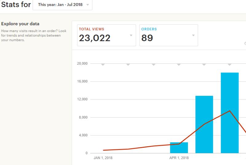 Количество просмотров на сайте увеличилось в 20 раз с 500  в январе до 10 в июне