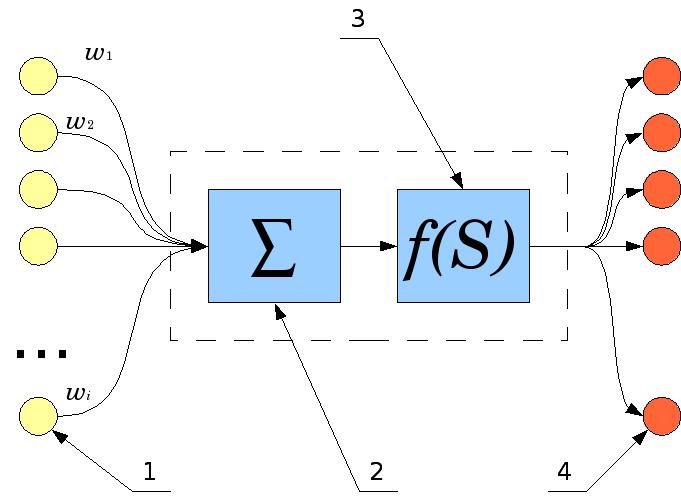 Модель математического нейрона Мак-Каллока-Питтса