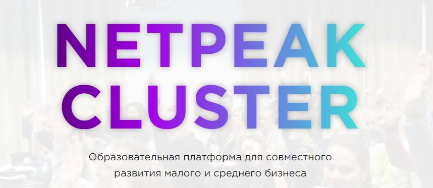 Netpeak Cluster