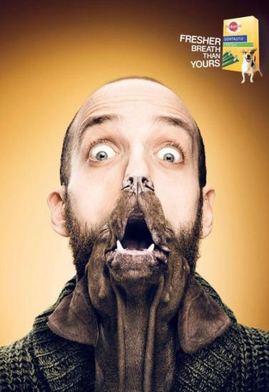 Пример рекламы собачьих палочек для чистки зубов