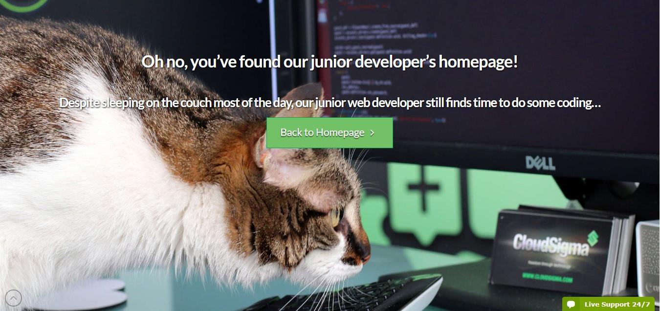 пример на страница 404
